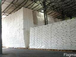 Export of Sugar