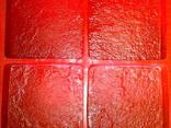 Oferecemos moldes termo-poliuretanos (TPU) não apenas para p - photo 1